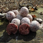 Boilies Mastodont Baits Berry Boom neutral we. 300g 20mm